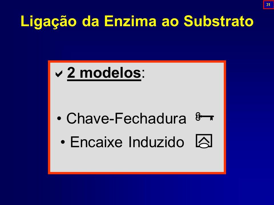 Ligação da Enzima ao Substrato  2 modelos: Chave-Fechadura  Encaixe Induzido  31