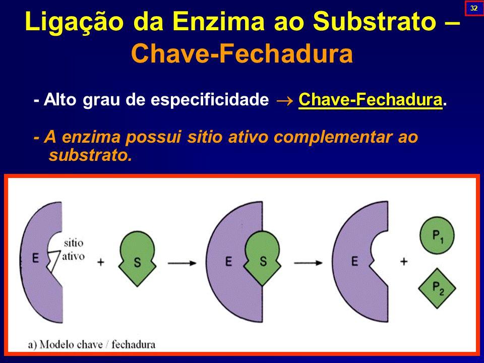 Chave-Fechadura - Alto grau de especificidade  Chave-Fechadura.