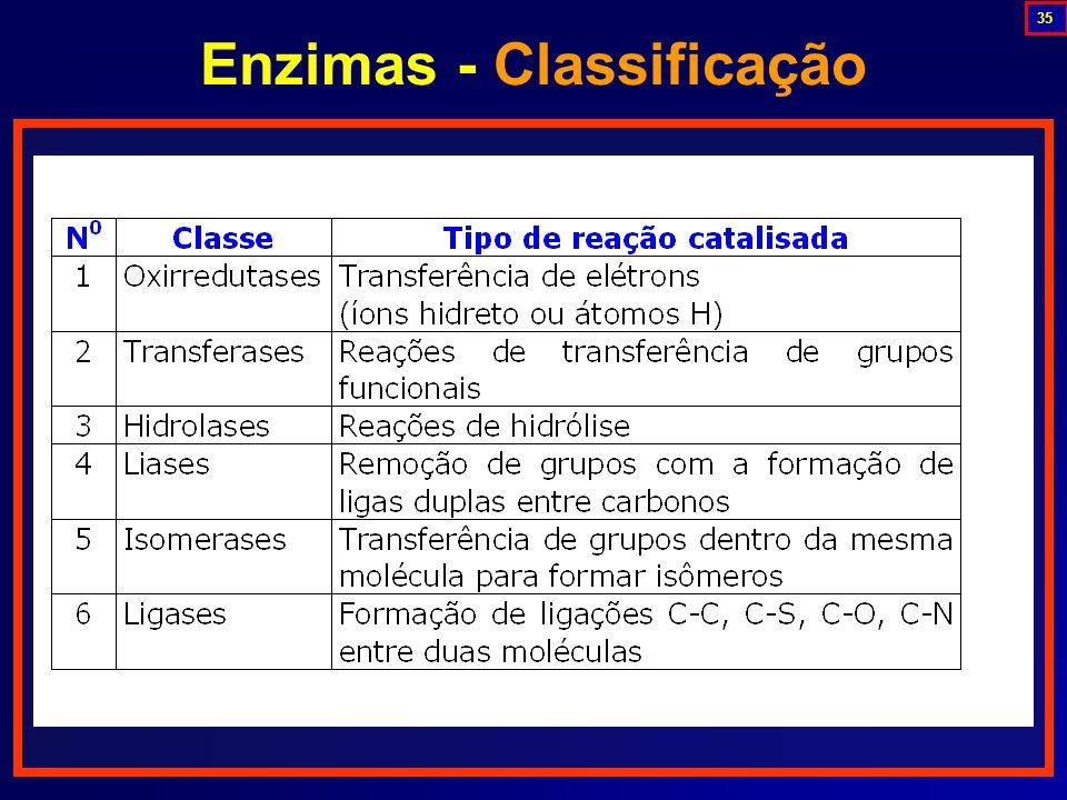 Enzimas - Classificação 35