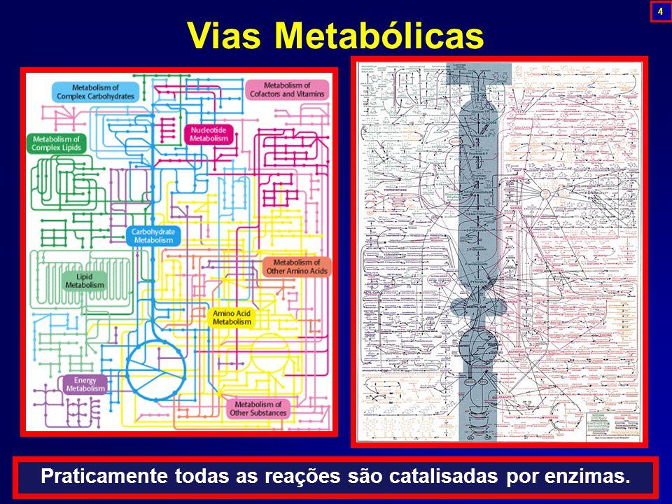 Vias Metabólicas Praticamente todas as reações são catalisadas por enzimas. 4