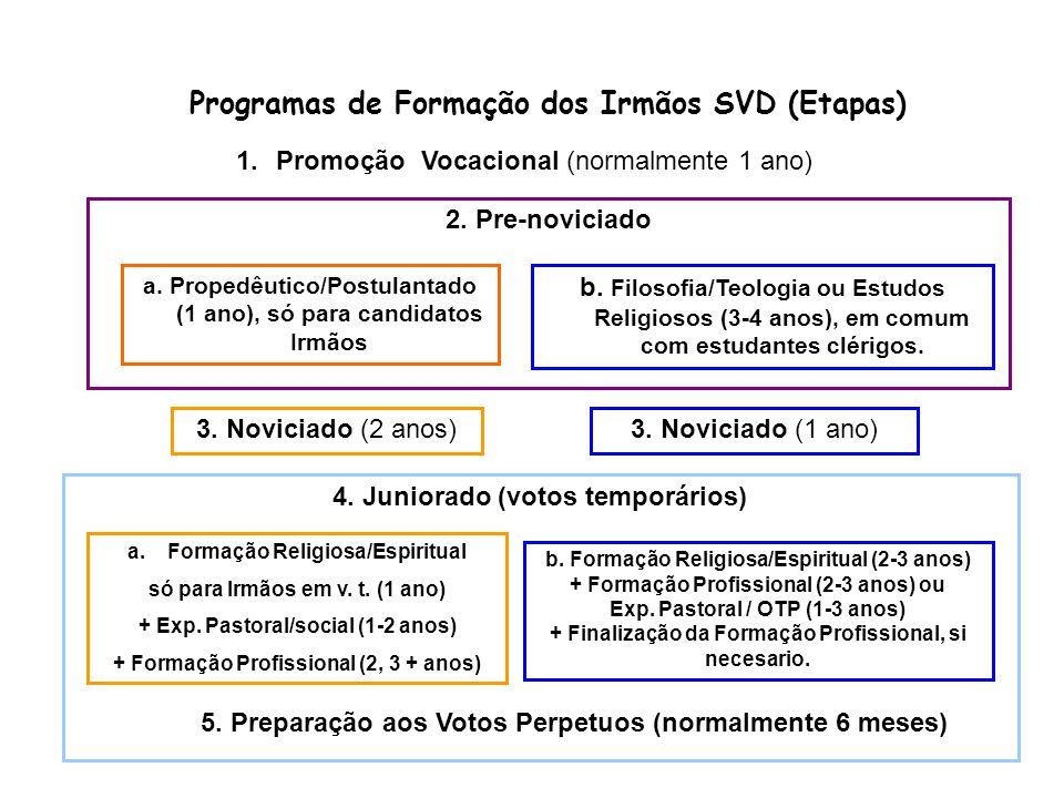 Programas de Formação dos Irmãos SVD (Etapas) 1.Promoção Vocacional (normalmente 1 ano) b.