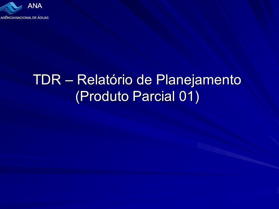 ANA AGÊNCIA NACIONAL DE ÁGUAS TDR – Relatório de Planejamento (Produto Parcial 01)