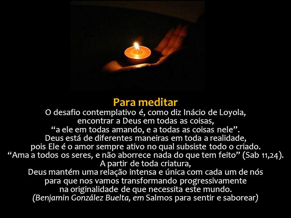 """Para meditar O desafio contemplativo é, como diz Inácio de Loyola, encontrar a Deus em todas as coisas, """"a ele em todas amando, e a todas as coisas ne"""