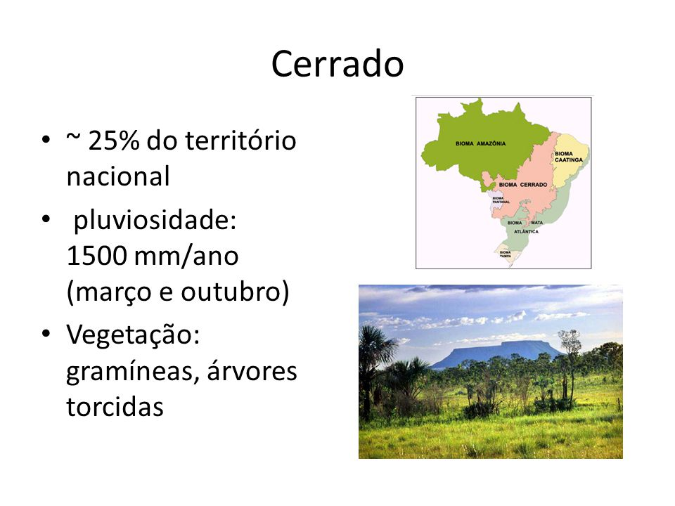 Cerrado ~ 25% do território nacional pluviosidade: 1500 mm/ano (março e outubro) Vegetação: gramíneas, árvores torcidas
