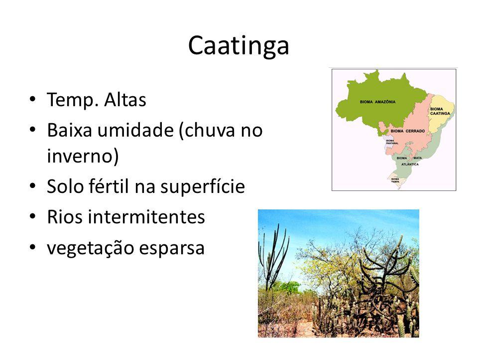 Caatinga Temp. Altas Baixa umidade (chuva no inverno) Solo fértil na superfície Rios intermitentes vegetação esparsa