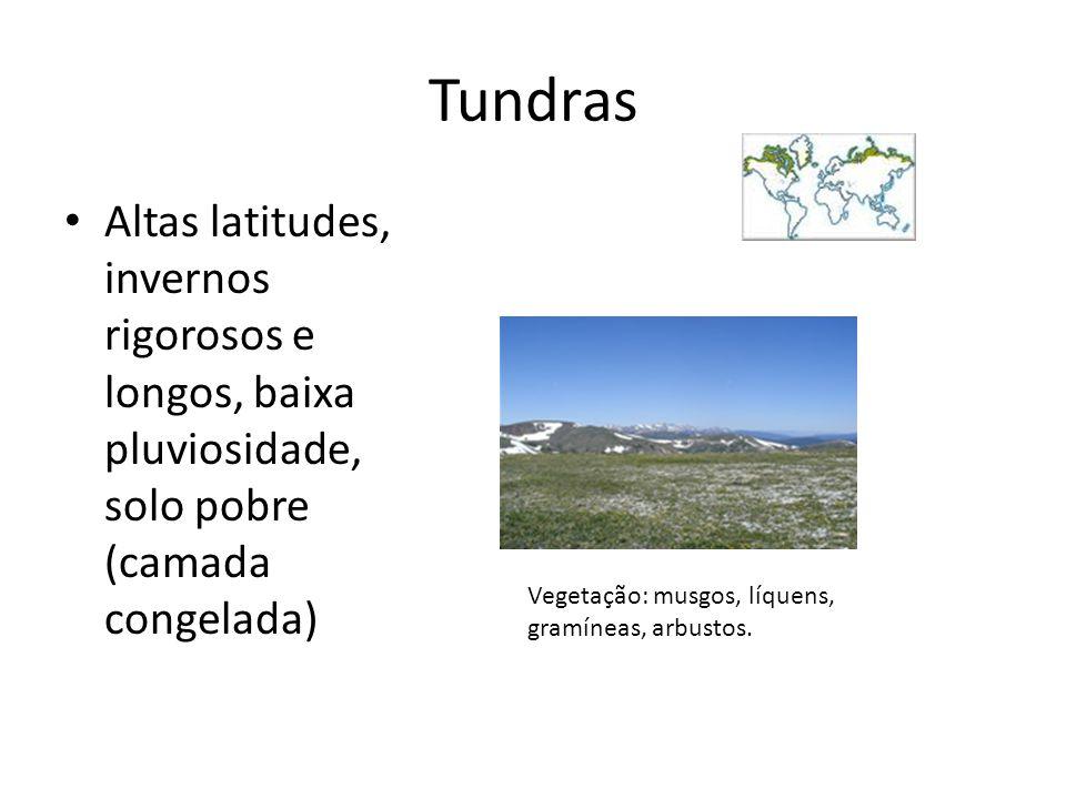 Tundras Altas latitudes, invernos rigorosos e longos, baixa pluviosidade, solo pobre (camada congelada) Vegetação: musgos, líquens, gramíneas, arbusto