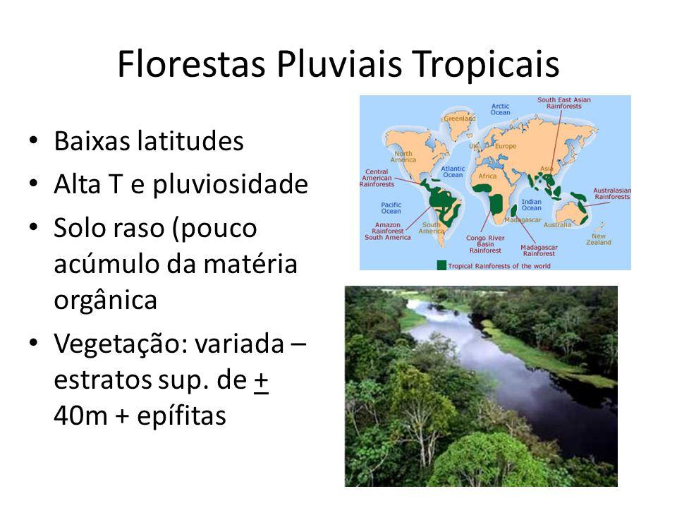 Florestas Pluviais Tropicais Baixas latitudes Alta T e pluviosidade Solo raso (pouco acúmulo da matéria orgânica Vegetação: variada – estratos sup. de