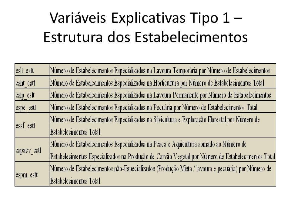 Variáveis Explicativas Tipo 1 – Estrutura dos Estabelecimentos