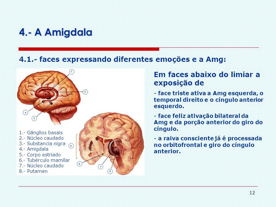 11 3.- Teorias Cognitiva X Pré-Cognitiva das Emoções 3.1.- sobre a mensuração da resposta emocional Os estados físicos subjetivamente experimentados e