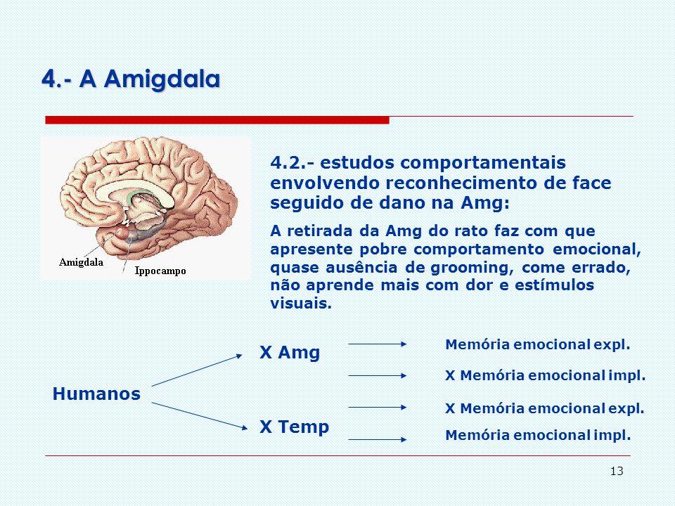 12 4.- A Amigdala 4.1.- faces expressando diferentes emoções e a Amg: Em faces abaixo do limiar a exposição de - face triste ativa a Amg esquerda, o t