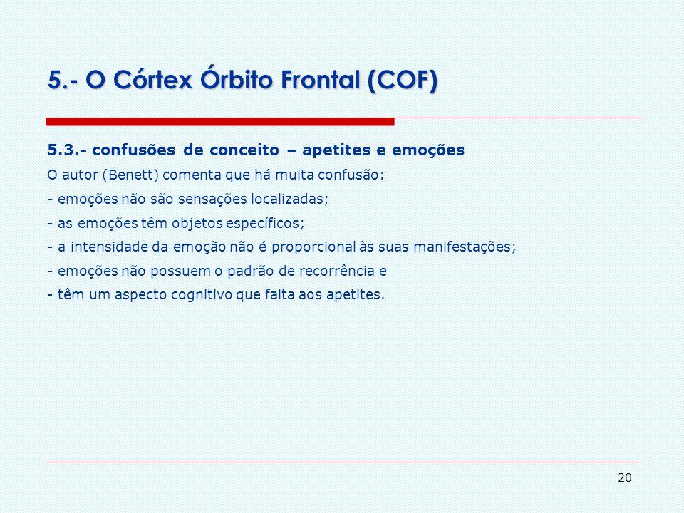 19 5.- O Córtex Órbito Frontal (COF) 5.2.- orbitofrontal córtex e a satisfação de apetites: a interpretação de Rolls de seu experimento com o COF Roll