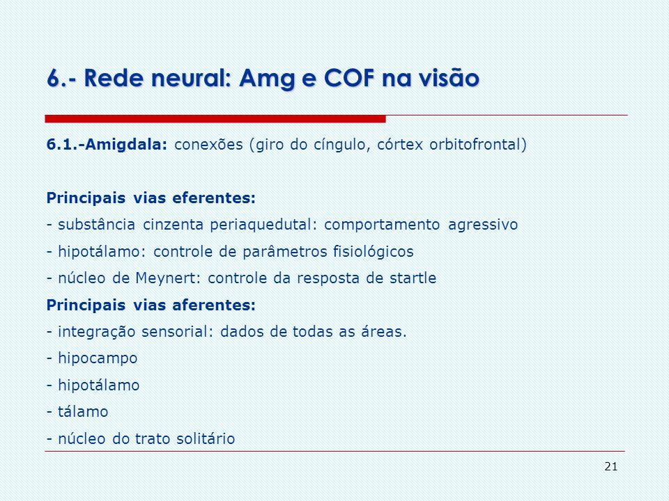 20 5.- O Córtex Órbito Frontal (COF) 5.3.- confusões de conceito – apetites e emoções O autor (Benett) comenta que há muita confusão: - emoções não sã