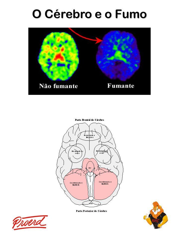 O Cérebro e o Fumo