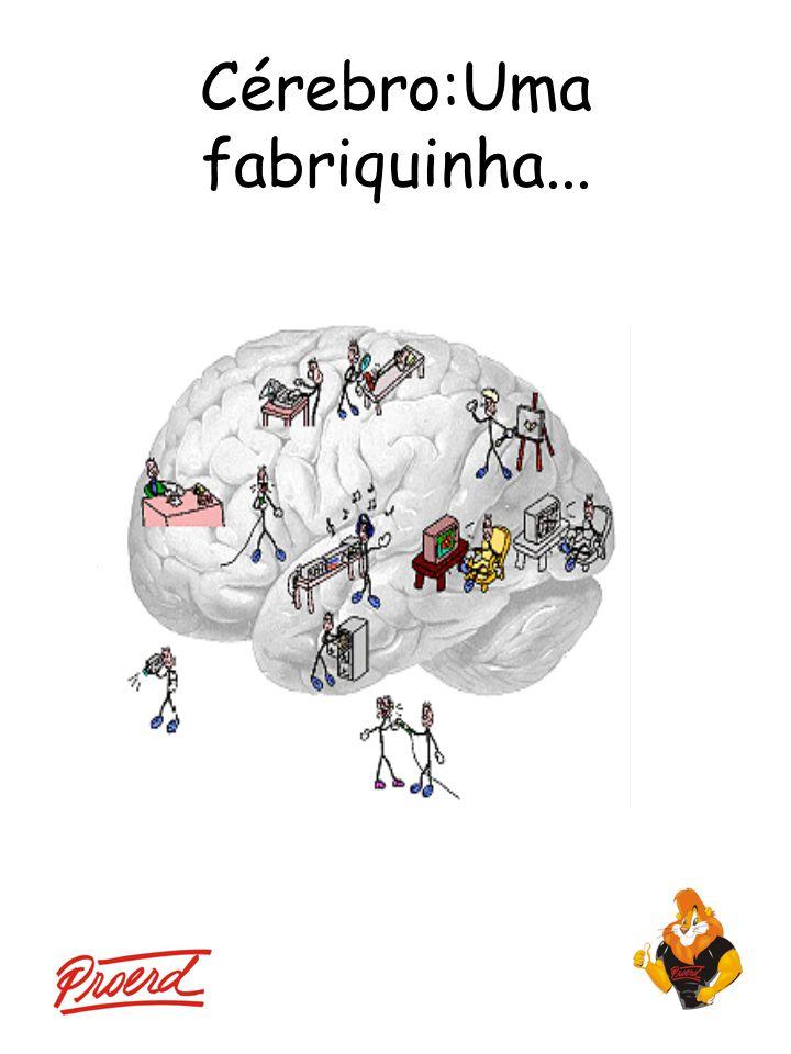 Cérebro:Uma fabriquinha...