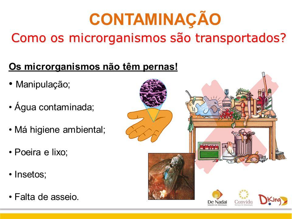 Como os microrganismos são transportados? Manipulação; Água contaminada; Má higiene ambiental; Poeira e lixo; Insetos; Falta de asseio. Os microrganis