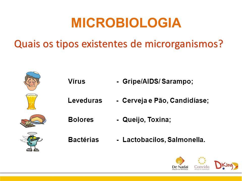 Quais os tipos existentes de microrganismos? Bactérias - Lactobacilos, Salmonella. Vírus- Gripe/AIDS/ Sarampo; Leveduras - Cerveja e Pão, Candidíase;