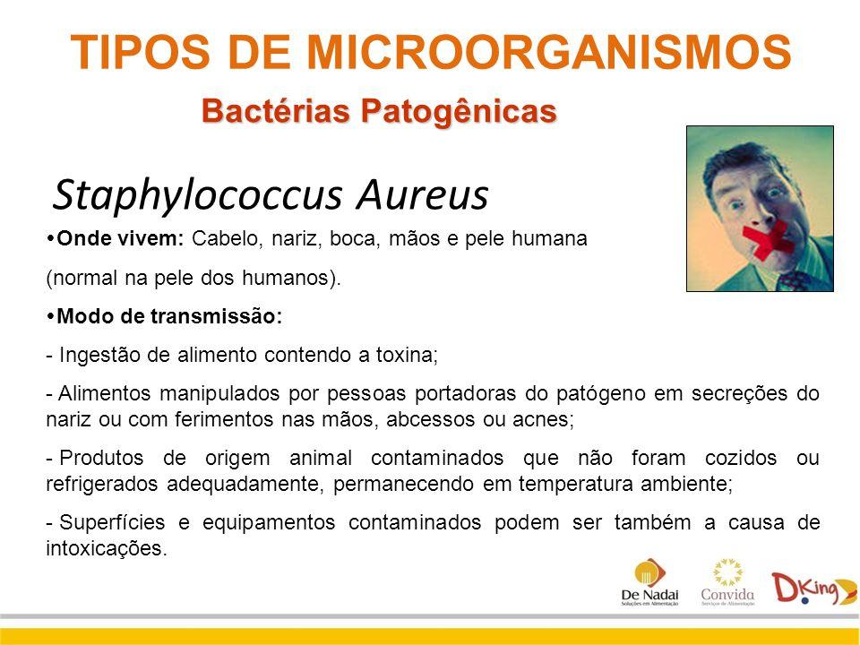 Staphylococcus Aureus  Onde vivem: Cabelo, nariz, boca, mãos e pele humana (normal na pele dos humanos).  Modo de transmissão: - Ingestão de aliment