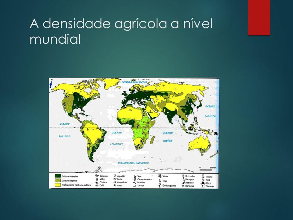 Áreas com maiores densidades Áreas com menores densidades Europa Regiões desérticas (Sara, Arábico, Australiano) – Temp.