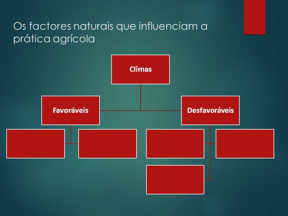Os factores naturais que influenciam a prática agrícola Formas de relevo DesfavoráveisFavoráveis