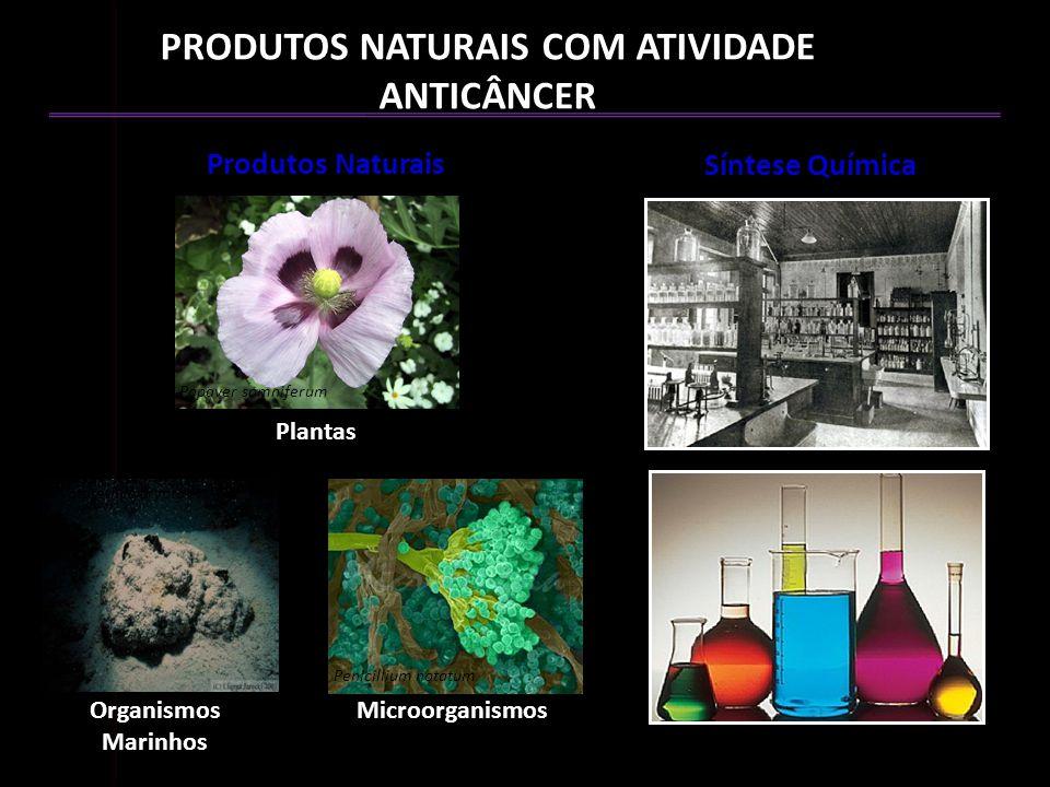 Síntese Química Produtos Naturais MicroorganismosOrganismos Marinhos Plantas Papaver somniferum Cryptotethya crypta Penicillium notatum PRODUTOS NATUR