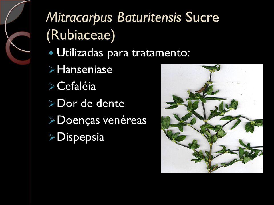Mitracarpus Baturitensis Sucre (Rubiaceae) Utilizadas para tratamento:  Hanseníase  Cefaléia  Dor de dente  Doenças venéreas  Dispepsia
