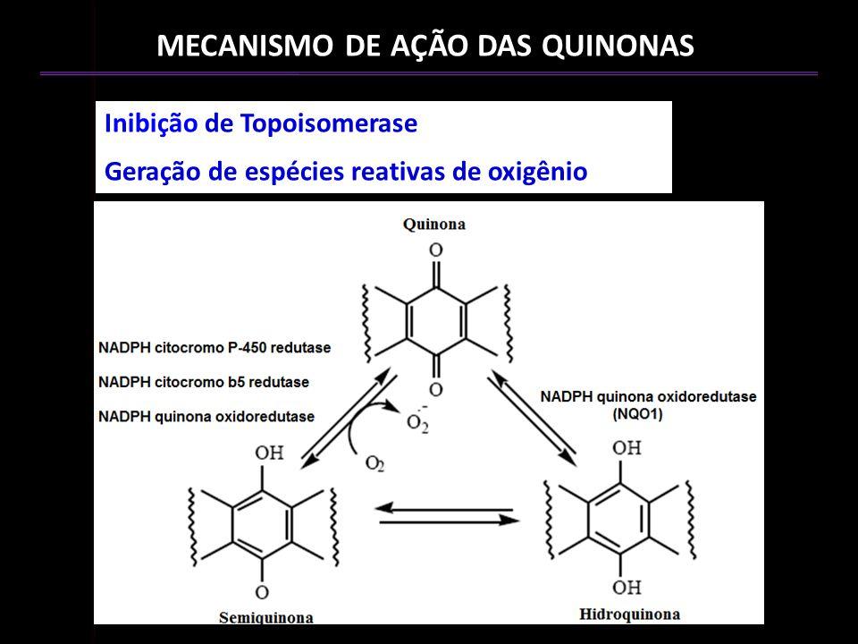 MECANISMO DE AÇÃO DAS QUINONAS Inibição de Topoisomerase Geração de espécies reativas de oxigênio