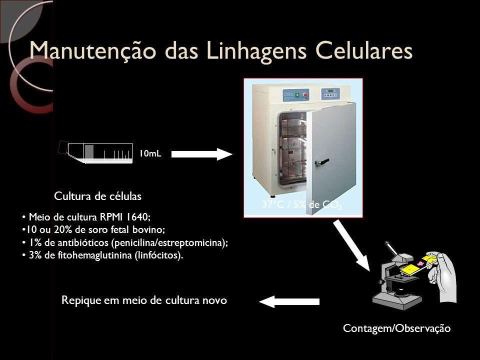 Manutenção das Linhagens Celulares Cultura de células Meio de cultura RPMI 1640; 10 ou 20% de soro fetal bovino; 1% de antibióticos (penicilina/estrep