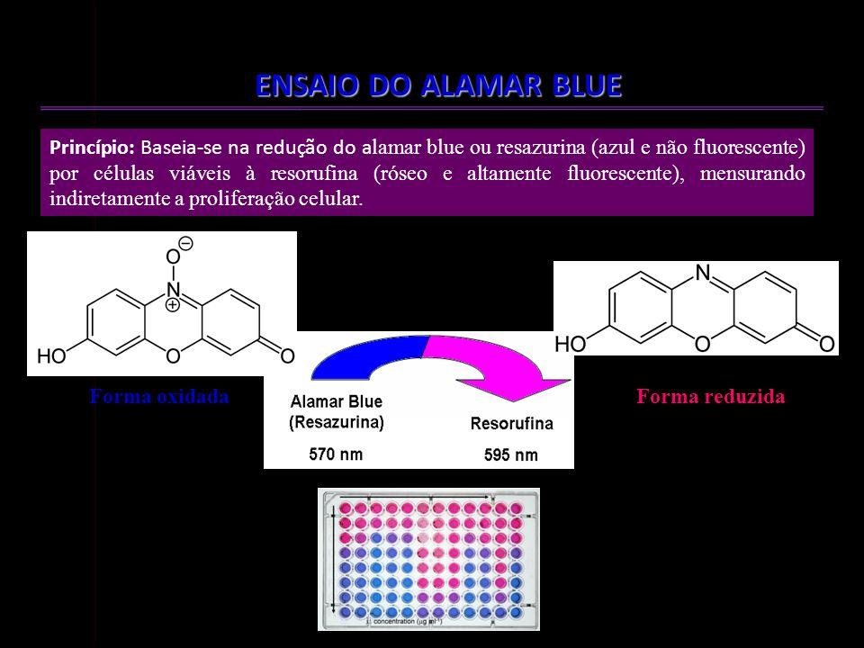 TESTE DE CITOTOXICIDADE EM CMSP ENSAIO DO ALAMAR BLUE Forma oxidadaForma reduzida Princípio: Baseia-se na redução do a lamar blue ou resazurina (azul