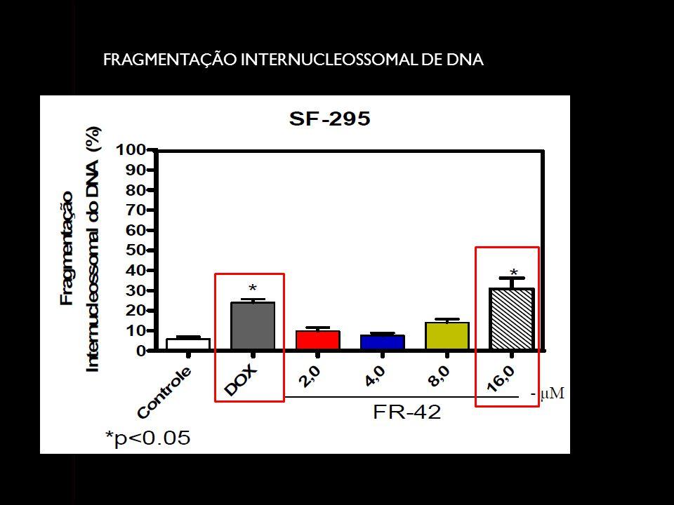 FRAGMENTAÇÃO INTERNUCLEOSSOMAL DE DNA