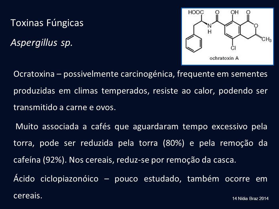 Ocratoxina – possivelmente carcinogénica, frequente em sementes produzidas em climas temperados, resiste ao calor, podendo ser transmitido a carne e o