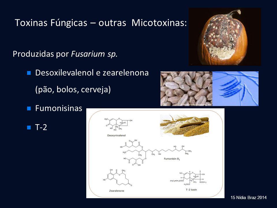 Produzidas por Fusarium sp. Desoxilevalenol e zearelenona (pão, bolos, cerveja) Fumonisinas T-2 Toxinas Fúngicas – outras Micotoxinas: 15 Nídia Braz 2