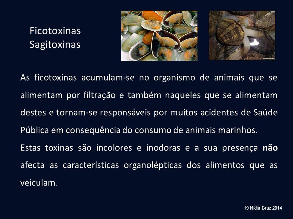 As ficotoxinas acumulam-se no organismo de animais que se alimentam por filtração e também naqueles que se alimentam destes e tornam-se responsáveis p