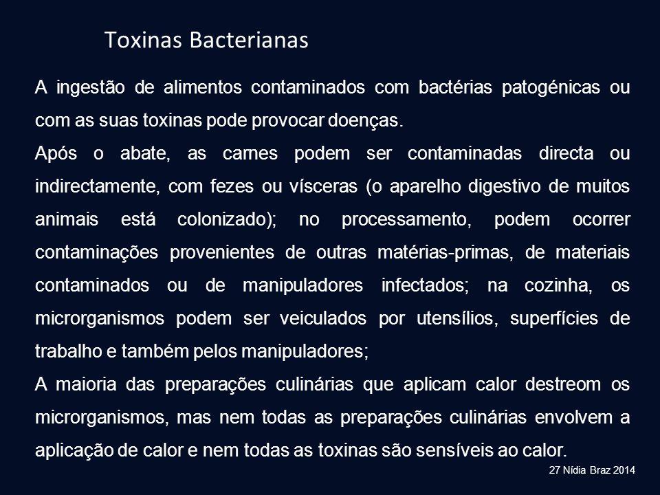 27 Nídia Braz 2014 Toxinas Bacterianas A ingestão de alimentos contaminados com bactérias patogénicas ou com as suas toxinas pode provocar doenças. Ap