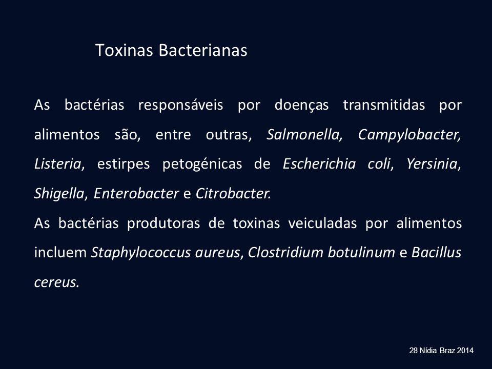 28 Nídia Braz 2014 Toxinas Bacterianas As bactérias responsáveis por doenças transmitidas por alimentos são, entre outras, Salmonella, Campylobacter,