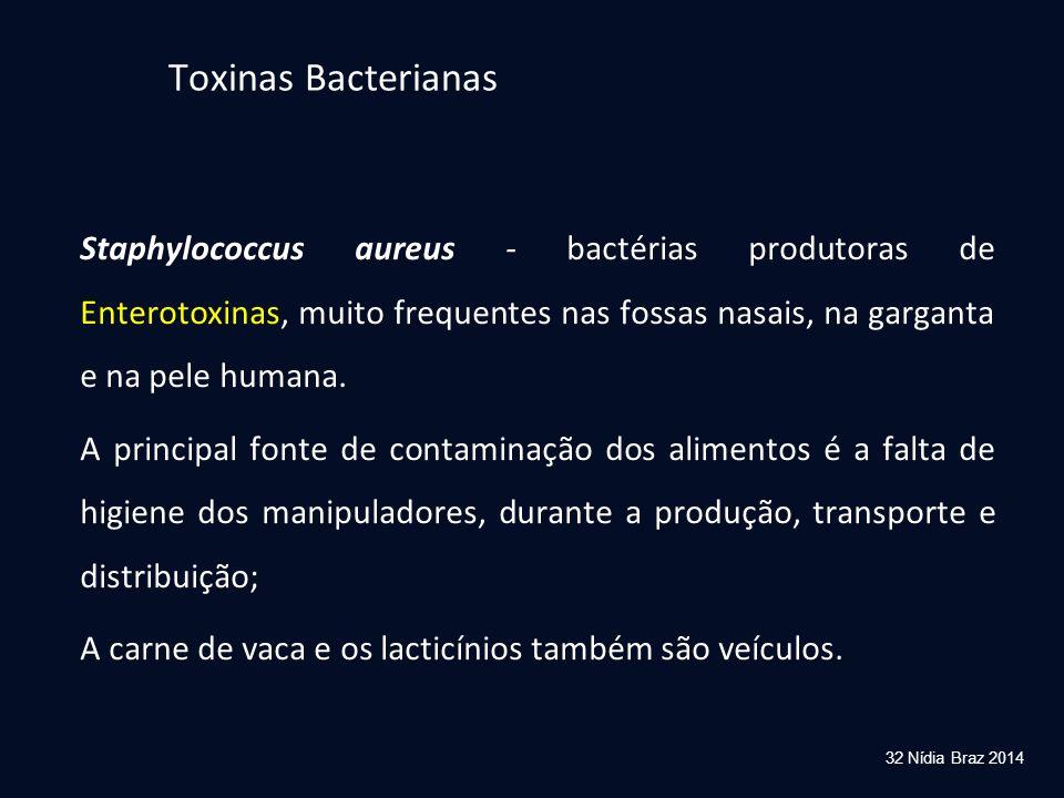 32 Nídia Braz 2014 Staphylococcus aureus - bactérias produtoras de Enterotoxinas, muito frequentes nas fossas nasais, na garganta e na pele humana. A