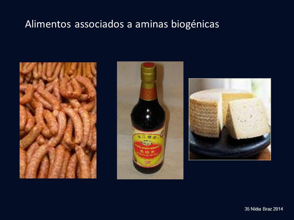 35 Nídia Braz 2014 Alimentos associados a aminas biogénicas