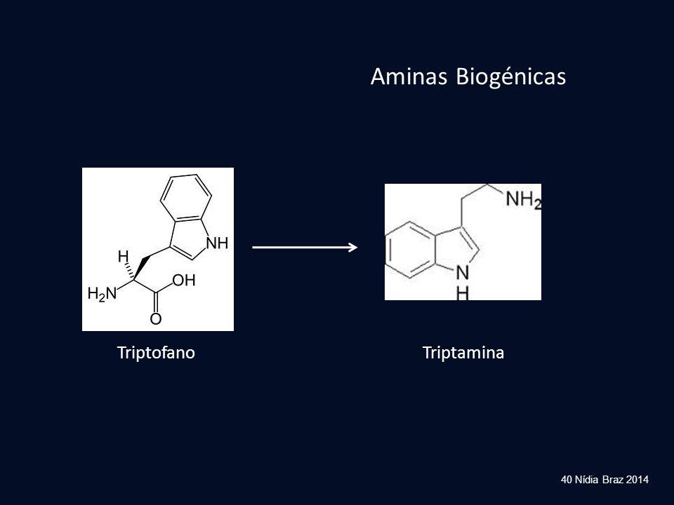 40 Nídia Braz 2014 TriptofanoTriptamina Aminas Biogénicas