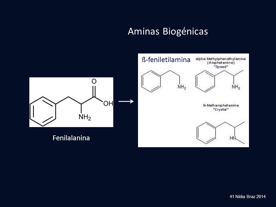 41 Nídia Braz 2014 Fenilalanina ß-feniletilamina Aminas Biogénicas