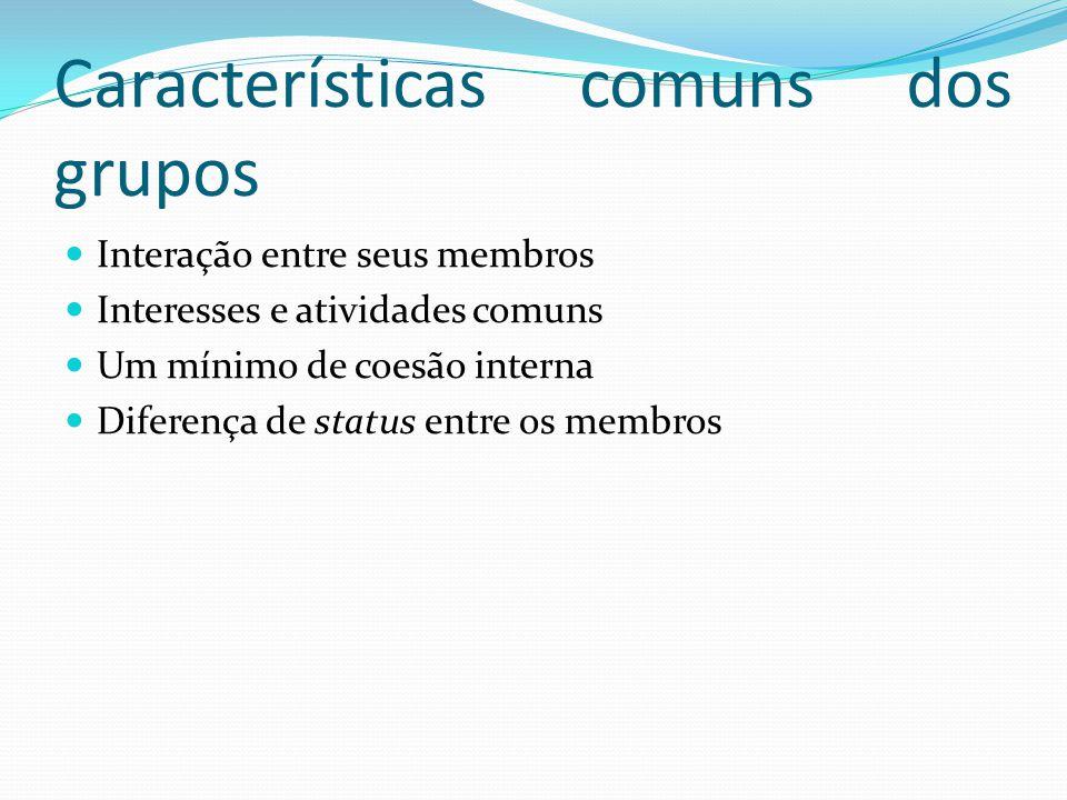Características comuns dos grupos Interação entre seus membros Interesses e atividades comuns Um mínimo de coesão interna Diferença de status entre os membros