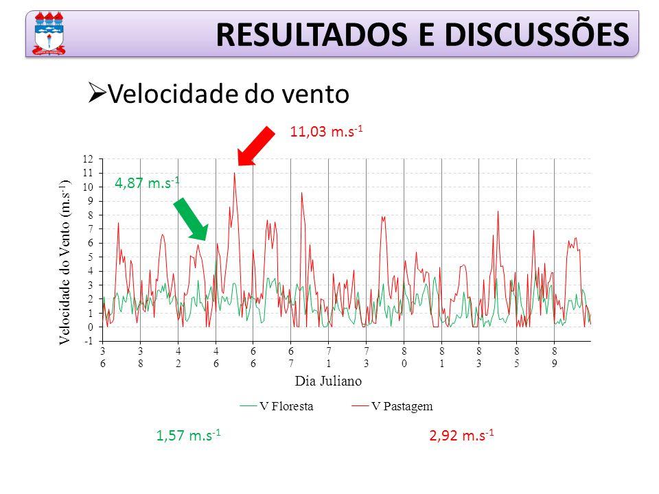 RESULTADOS E DISCUSSÕES  Velocidade do vento 4,87 m.s -1 11,03 m.s -1 1,57 m.s -1 2,92 m.s -1