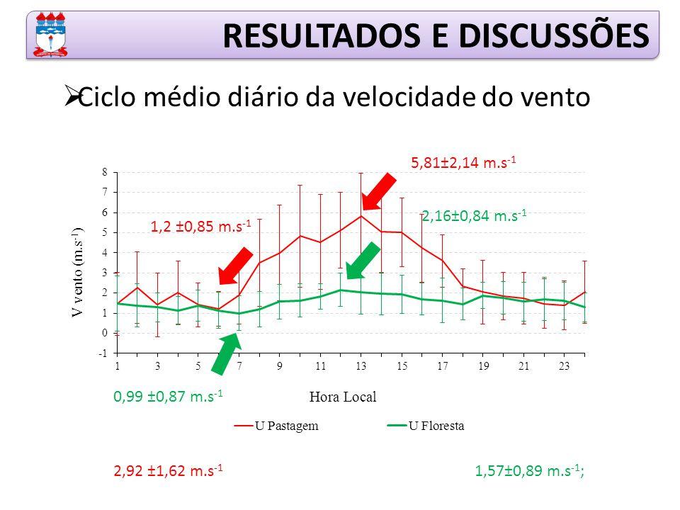 RESULTADOS E DISCUSSÕES  Ciclo médio diário da velocidade do vento 1,57±0,89 m.s -1 ; 2,16±0,84 m.s -1 0,99 ±0,87 m.s -1 5,81±2,14 m.s -1 1,2 ±0,85 m.s -1 2,92 ±1,62 m.s -1
