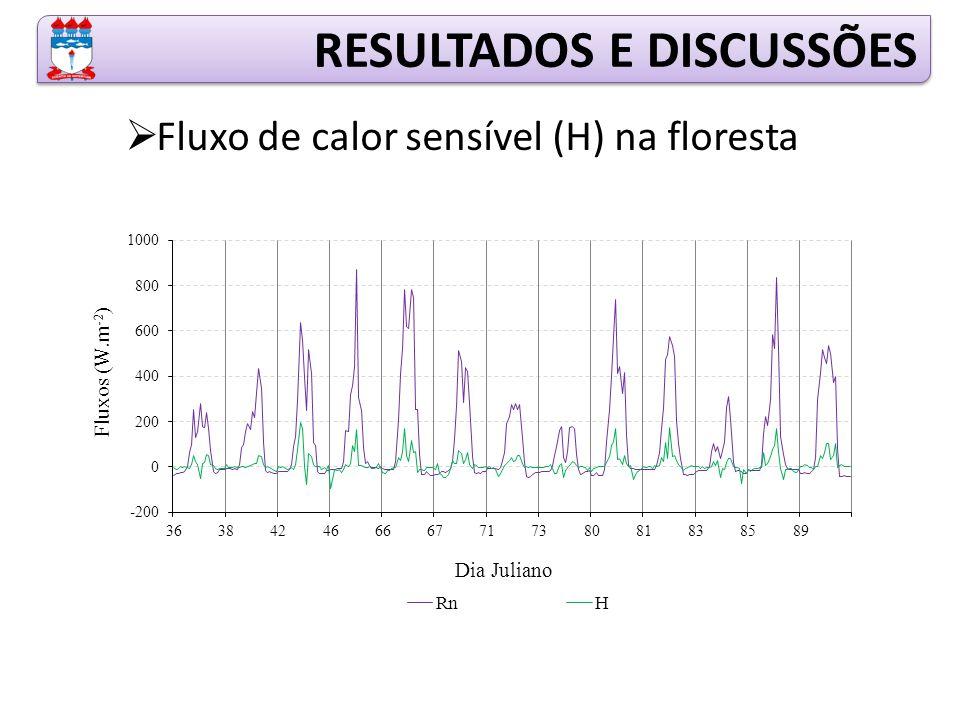  Fluxo de calor sensível (H) na floresta