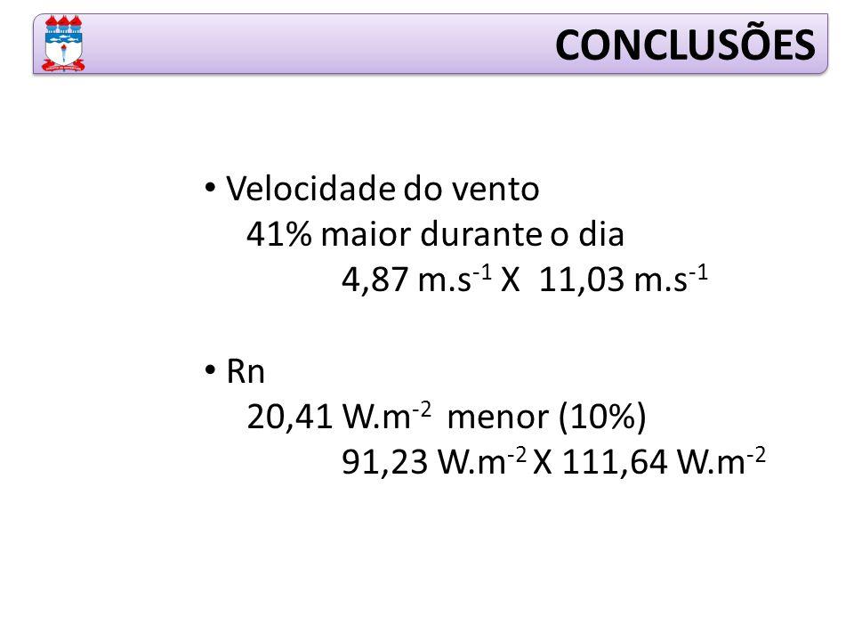Velocidade do vento 41% maior durante o dia 4,87 m.s -1 X 11,03 m.s -1 Rn 20,41 W.m -2 menor (10%) 91,23 W.m -2 X 111,64 W.m -2 CONCLUSÕES