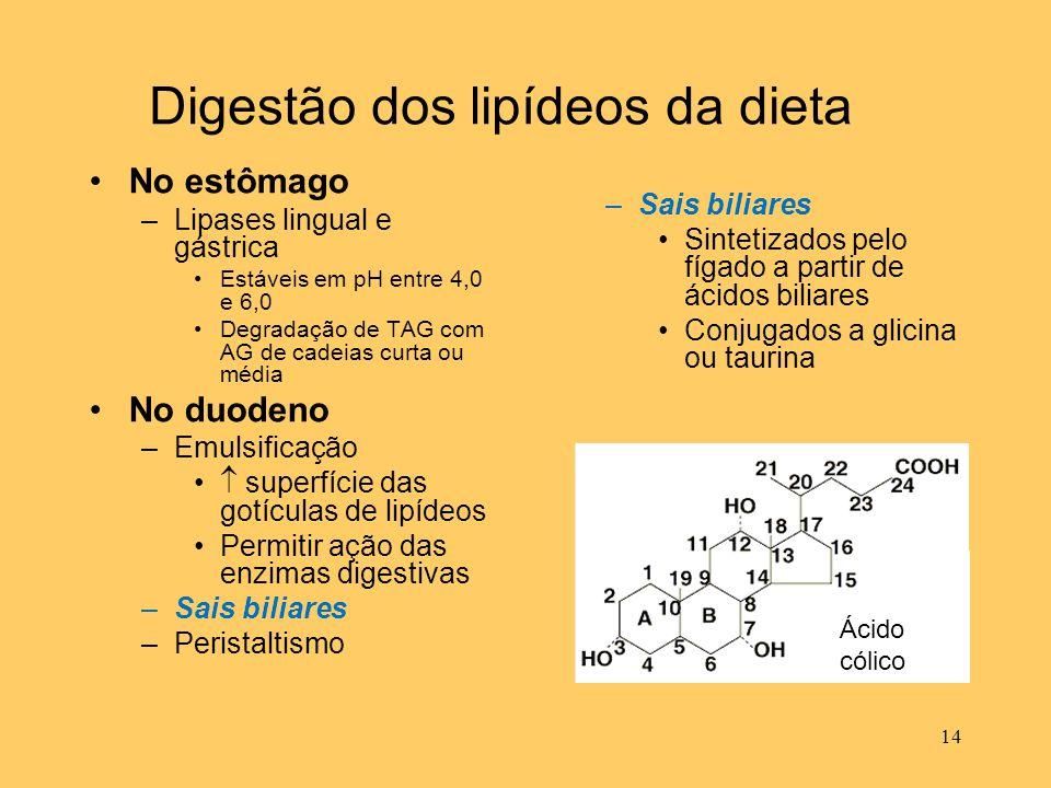 14 Digestão dos lipídeos da dieta No estômago –Lipases lingual e gástrica Estáveis em pH entre 4,0 e 6,0 Degradação de TAG com AG de cadeias curta ou