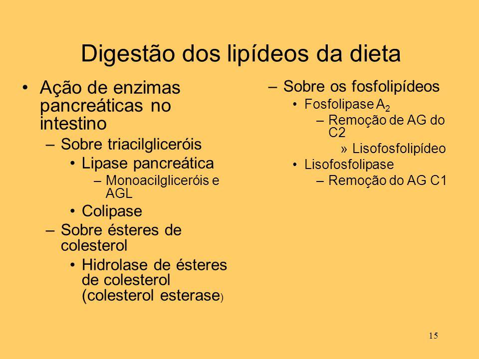 15 Digestão dos lipídeos da dieta Ação de enzimas pancreáticas no intestino –Sobre triacilgliceróis Lipase pancreática –Monoacilgliceróis e AGL Colipa