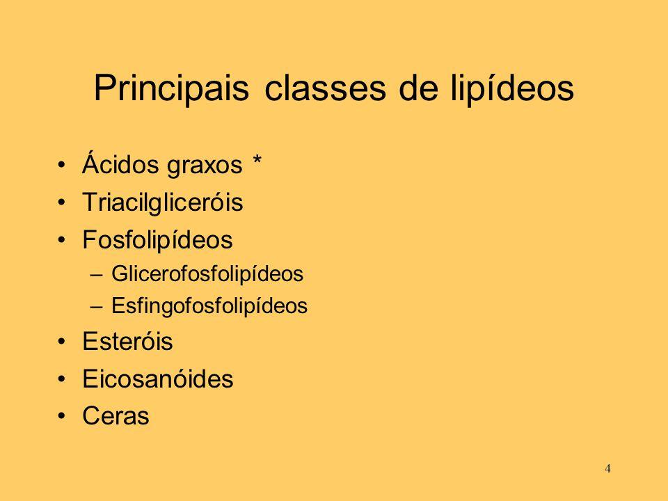 Principais classes de lipídeos Ácidos graxos * Triacilgliceróis Fosfolipídeos –Glicerofosfolipídeos –Esfingofosfolipídeos Esteróis Eicosanóides Ceras
