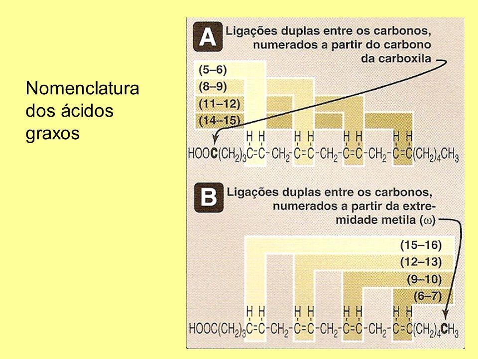 6 Nomenclatura dos ácidos graxos