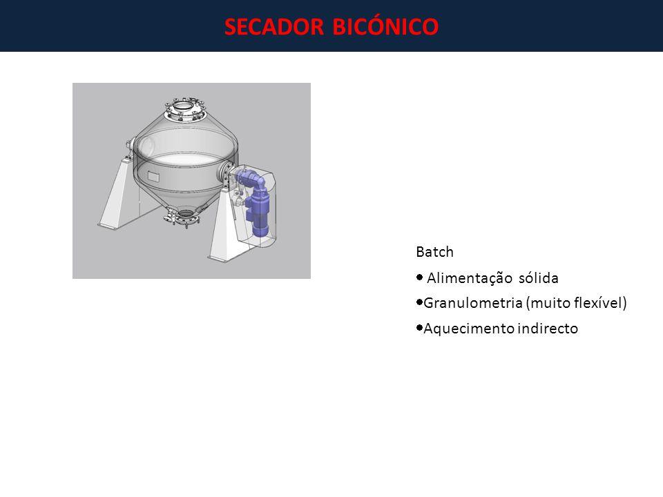 SECADOR BICÓNICO Batch  Alimentação sólida  Granulometria (muito flexível)  Aquecimento indirecto
