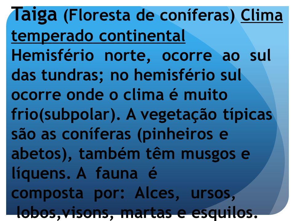 Taiga (Floresta de coníferas) Clima temperado continental Hemisfério norte, ocorre ao sul das tundras; no hemisfério sul ocorre onde o clima é muito f