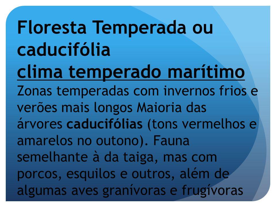 Floresta Temperada ou caducifólia clima temperado marítimo Zonas temperadas com invernos frios e verões mais longos Maioria das árvores caducifólias (